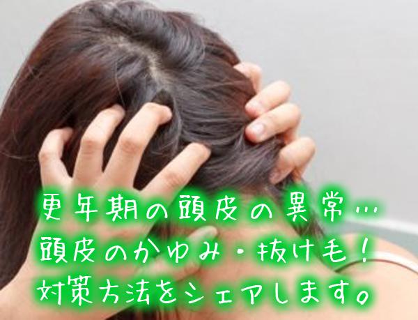 更年期の頭皮の異常…頭皮のかゆみ・抜け毛!対策方法をシェアします。.jpg